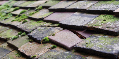 Bromley roof repair costs